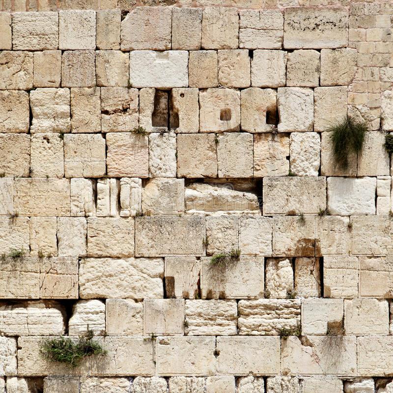 Borders & Walls